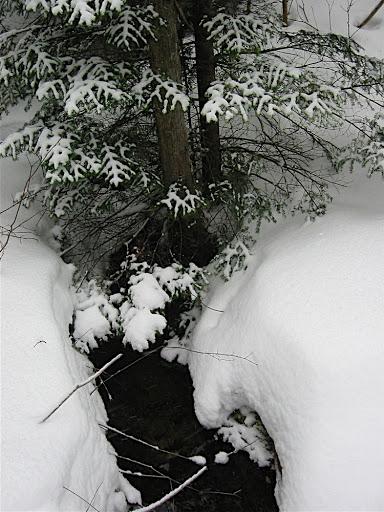 stream-in-snow