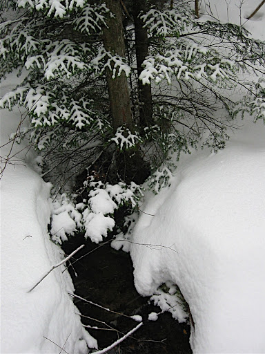 stream-in-snow