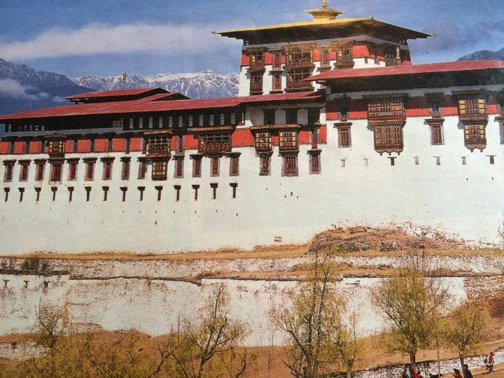 Himalayan-red