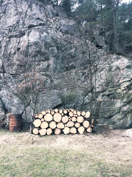 Therese-logs