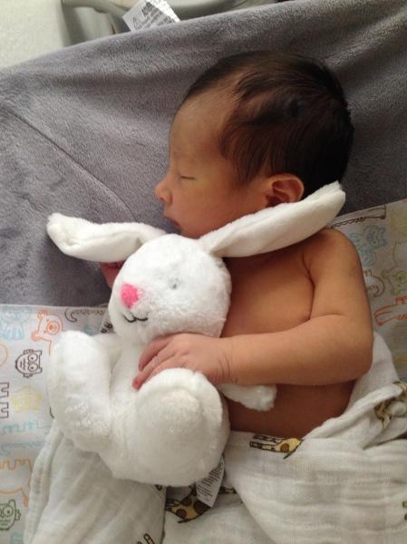 Eero-bunny