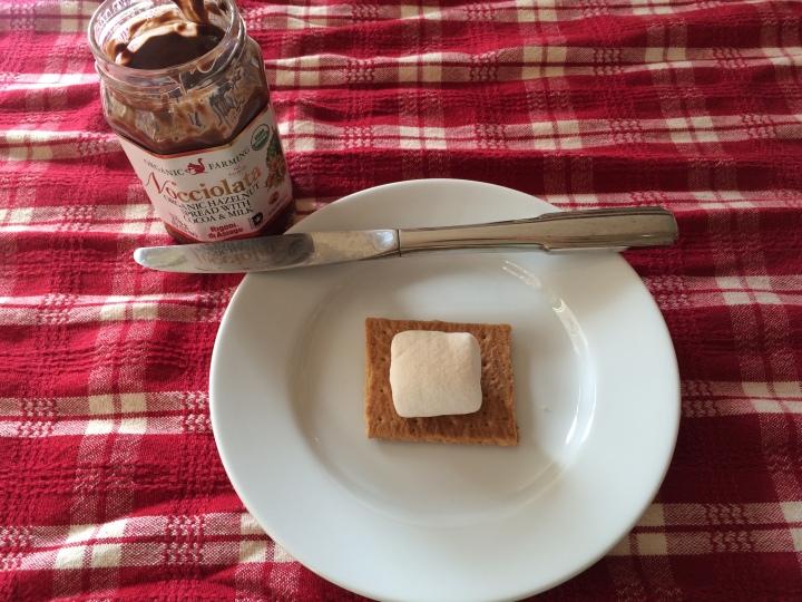 homemade-chocolate-hazelnut-s'mores