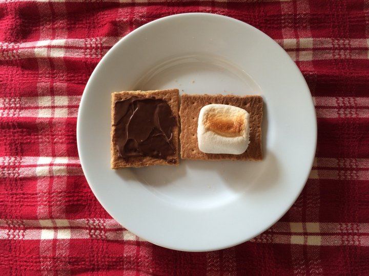 homemade-nutella-s'mores